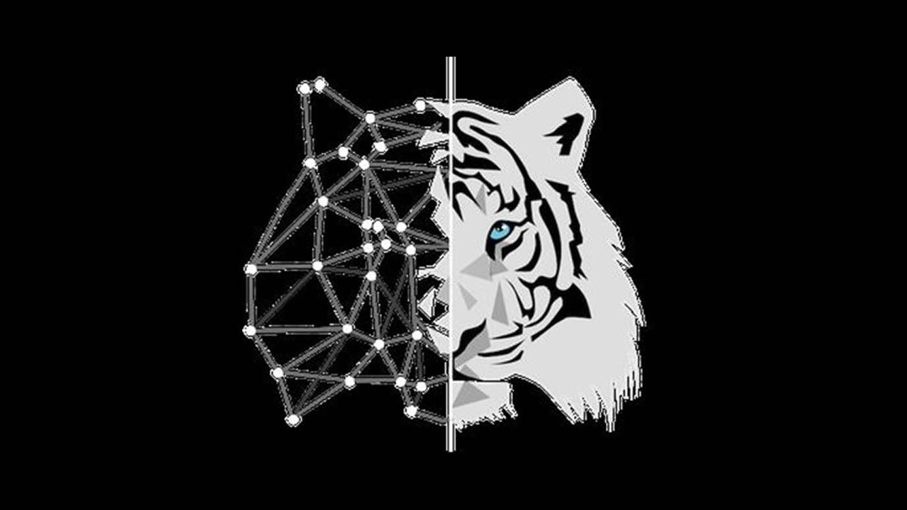 RockzFX Ultimate Scalping Masterclass 4.0